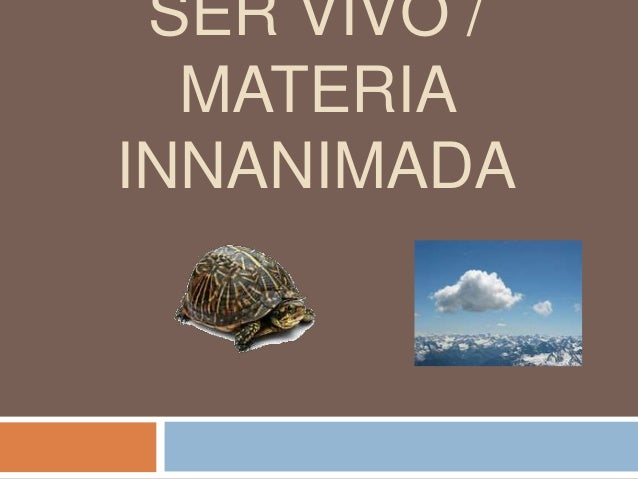 SER VIVO / MATERIA INNANIMADA
