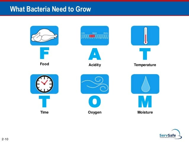 """e coli bacteria characteristics danger and prevention - contents introduction history characteristics mechanism of  unsafe for e coli bacteria,"""" and  health and in the prevention and."""