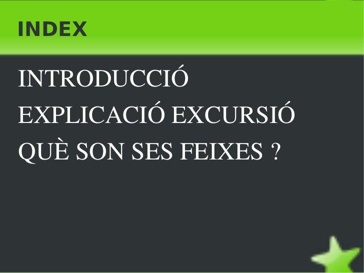 INDEX <ul><li>INTRODUCCIÓ