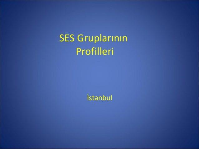 SES Gruplarının   Profilleri      İstanbul