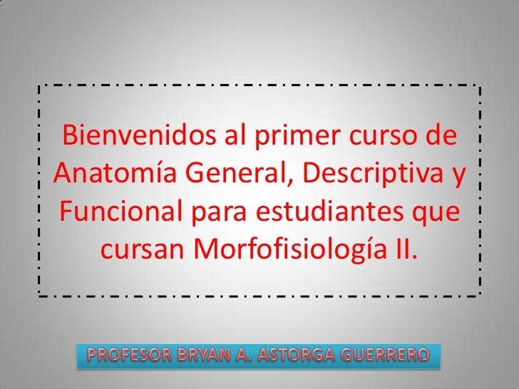 Bienvenidos al primer curso deAnatomía General, Descriptiva yFuncional para estudiantes que   cursan Morfofisiología II.