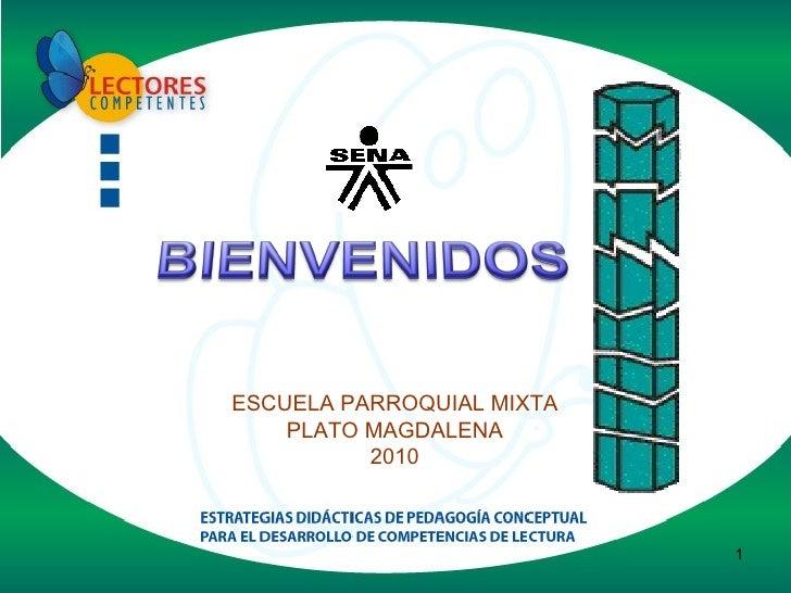 ESCUELA PARROQUIAL MIXTA PLATO MAGDALENA 2010