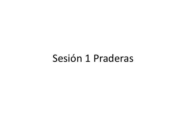 Sesión 1 praderas