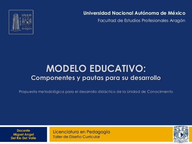MODELO EDUCATIVO: Componentes y pautas para su desarrollo Propuesta metodológica para el desarrollo didáctico de la Unidad...
