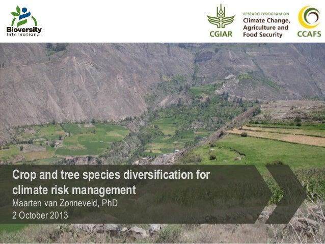 Crop and tree species diversification for climate risk management Maarten van Zonneveld, PhD 2 October 2013