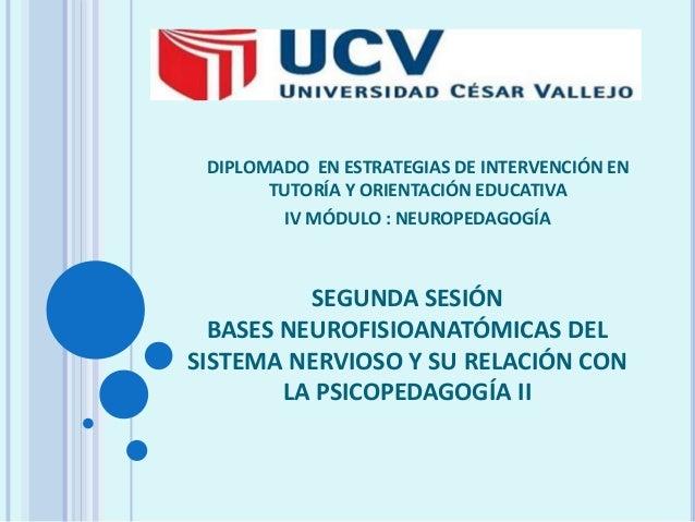 DIPLOMADO EN ESTRATEGIAS DE INTERVENCIÓN EN TUTORÍA Y ORIENTACIÓN EDUCATIVA IV MÓDULO : NEUROPEDAGOGÍA  SEGUNDA SESIÓN BAS...