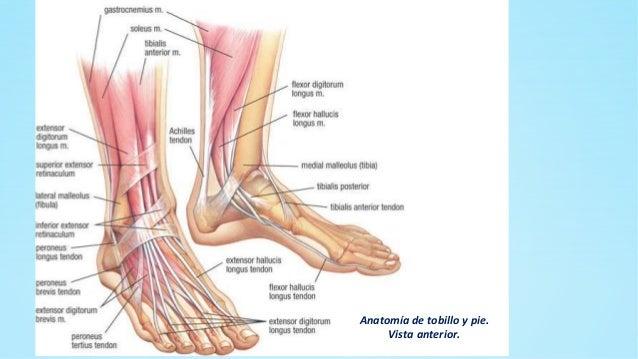 La osteocondrosis el dolor vivo en la mano