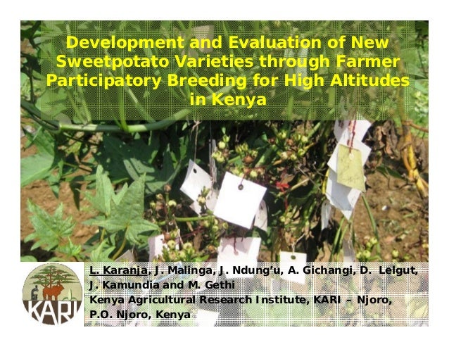 Sess06 4 development and evaluation of new sweetpotato varieties through farmer participation breeding for high altitudes in kenya