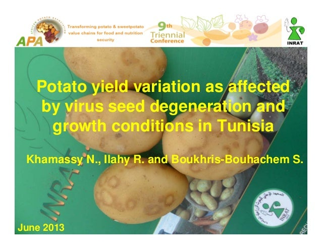 Potato yield variation as affected by virus seed degeneration and growth conditions in Tunisia Khamassy N., Ilahy R. and B...