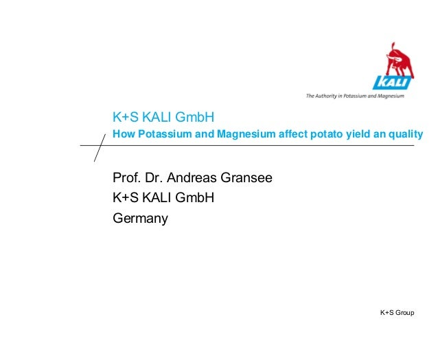 K+S Group K+S KALI GmbH How Potassium and Magnesium affect potato yield an quality Prof. Dr. Andreas Gransee K+S KALI GmbH...