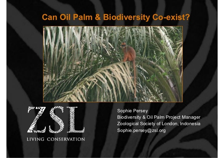 Can Oil Palm & Biodiversity Co-exist?                  Sophie Persey                  Biodiversity & Oil Palm Project Mana...