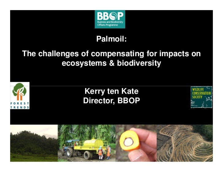 Palmoil:The challenges of compensating for impacts on          ecosystems & biodiversity               Kerry ten Kate     ...