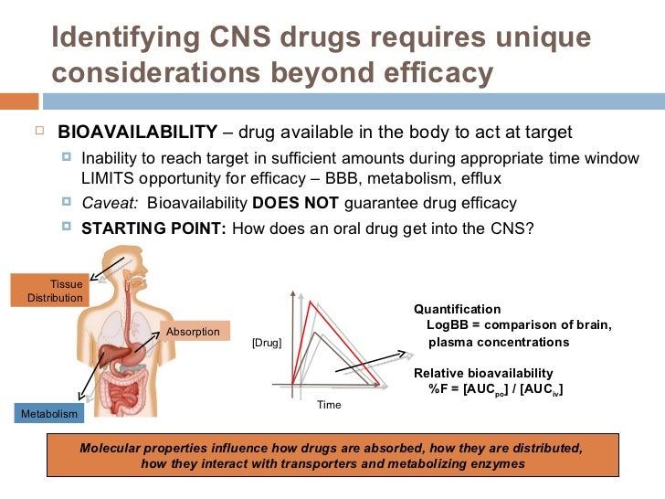 Identifying CNS drugs requires unique considerations beyond efficacy <ul><li>BIOAVAILABILITY  – drug available in the body...
