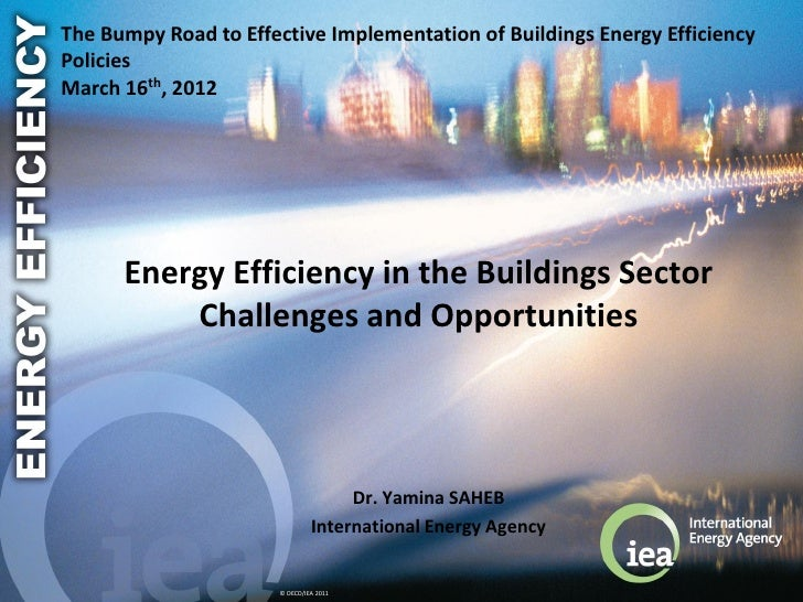 The Bumpy Road to Effective Implementation of Buildings Energy EfficiencyPoliciesMarch 16th, 2012      Energy Efficiency i...