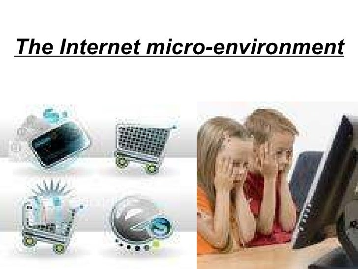 The Internet micro-environment