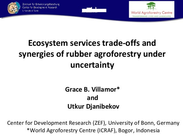 Ecosystem services trade-offs and synergies of rubber agroforestry under uncertainty Grace B. Villamor* and Utkur Djanibek...