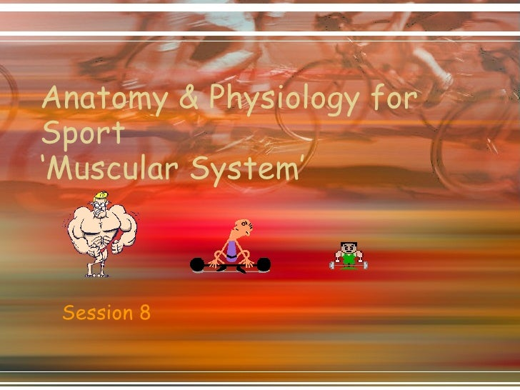 Anatomy & Physiology for Sport 'Muscular System' Session 8