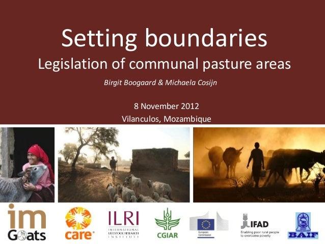 Setting boundariesLegislation of communal pasture areas         Birgit Boogaard & Michaela Cosijn                  8 Novem...