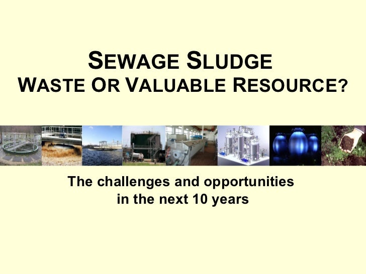 Sewage Sludge – Challenge Or Opportunity