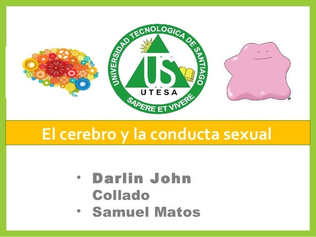 El cerebro y la conducta sexual • Darlin John Collado • Samuel Matos