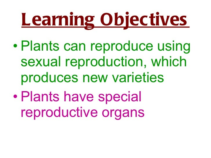 Learning Objectives <ul><li>Plants can reproduce using sexual reproduction, which produces new varieties </li></ul><ul><li...