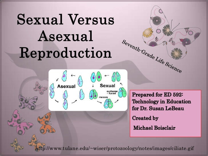 asexual vs sexual reproduction notes In many ways asexual reproduction is actually a better reproductive strategy than  sexual reproduction sex can be quite costly in fact, it is doubly costly, since.