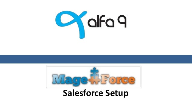 Salesforce Setup