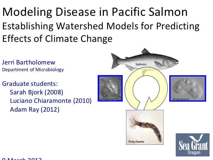 Modeling Disease in Pacific Salmon