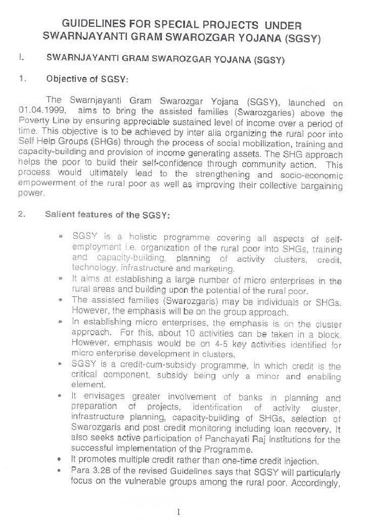 Sgs yguidelines
