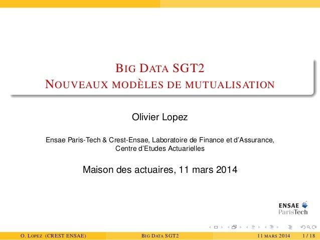 BIG DATA SGT2 NOUVEAUX MOD `ELES DE MUTUALISATION Olivier Lopez Ensae Paris-Tech & Crest-Ensae, Laboratoire de Finance et ...