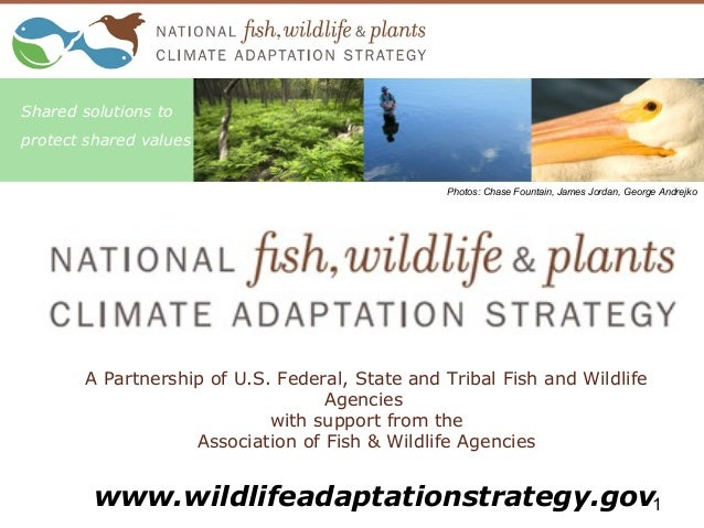 A Partnership of U.S. Federal, State and Tribal Fish and Wildlife Agencies with support from the Association of Fish & Wil...