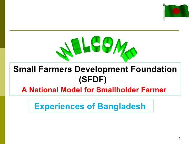 Small Farmers Development Foundation               (SFDF) A National Model for Smallholder Farmer    Experiences of Bangla...