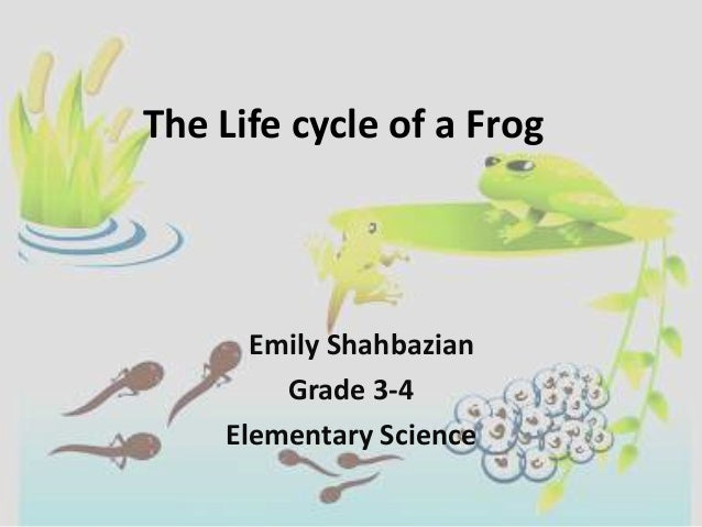 The Life cycle of a Frog      Emily Shahbazian        Grade 3-4    Elementary Science