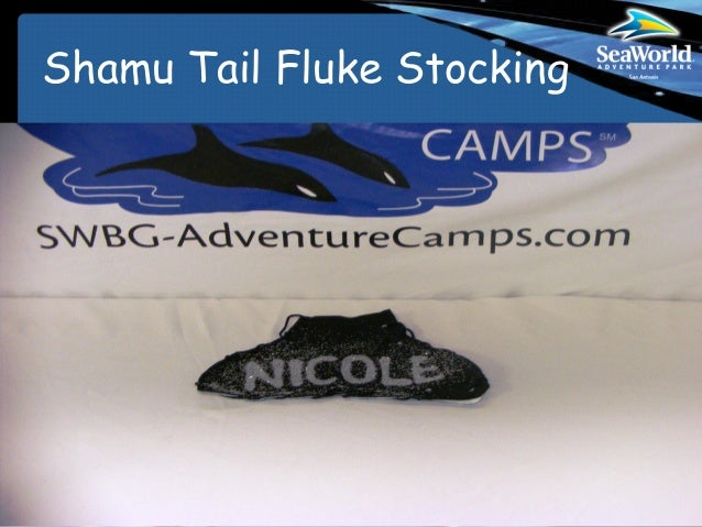 Shamu Tail Fluke Stocking