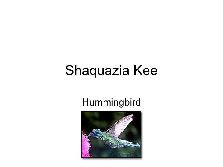 Shaquazia Kee Hummingbird
