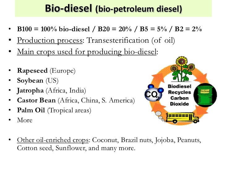business plan commercial production of sunflower Biofuels pricing and manufacturing economics since its first commercial production in the late model for biodiesel production from sunflower.