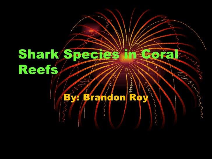 Shark Species in Coral Reefs By: Brandon Roy