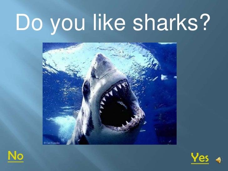 Do you like sharks?     No               Yes