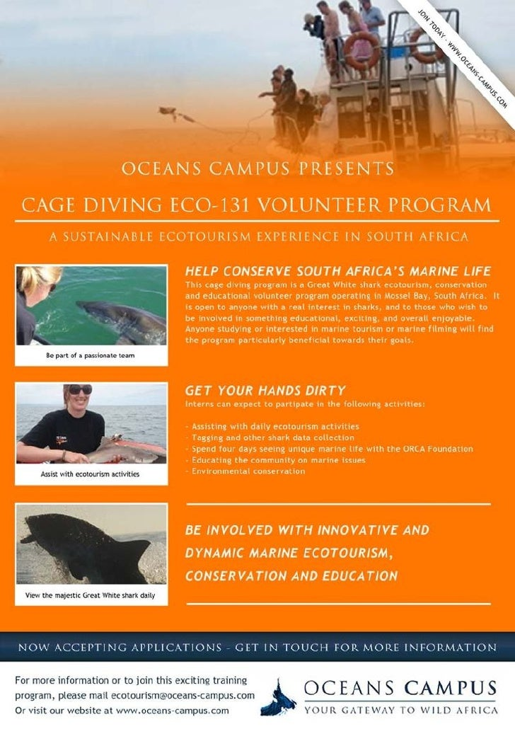 Shark Cage Diving Volunteer