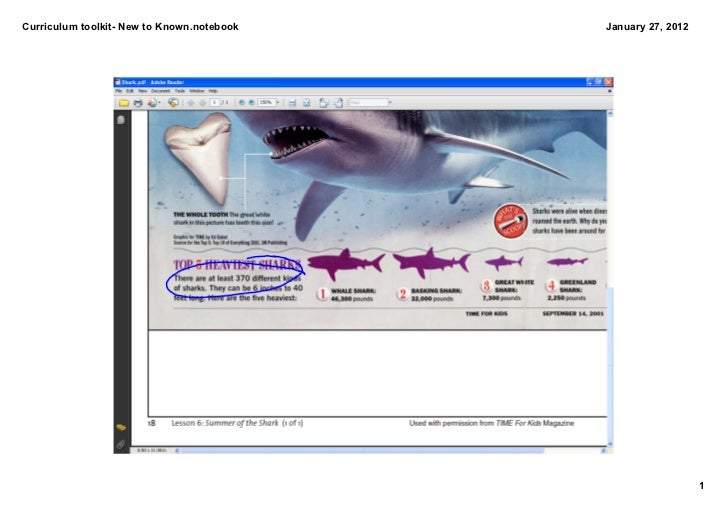 Curriculum Toolkit- Connecting Known to New- Sharks
