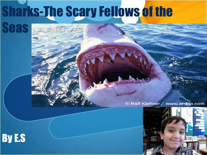 Sharks-The Scary Fellows of the Seas <br />By E.S<br />