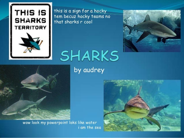 this is a sign for a hocky               tem becuz hocky teams no               that sharks r cool                        ...