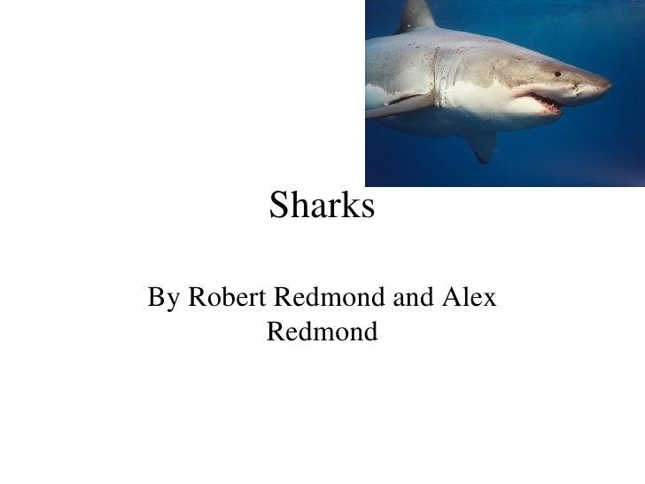 Sharks By Robert Redmond and Alex Redmond