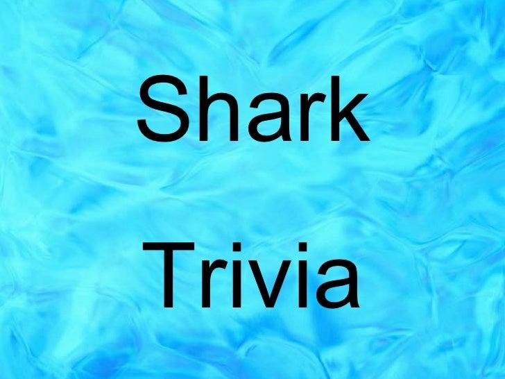 Shark Trivia 5th Grade   Web