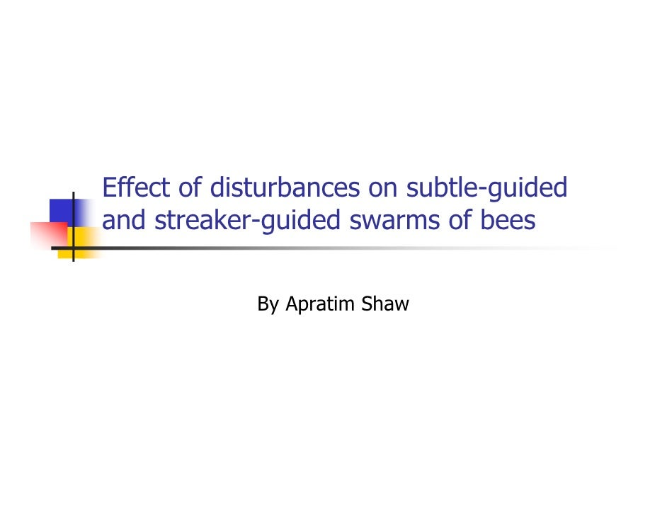 Effect of disturbances on subtle-guided and streaker-guided swarms of bees               By Apratim Shaw