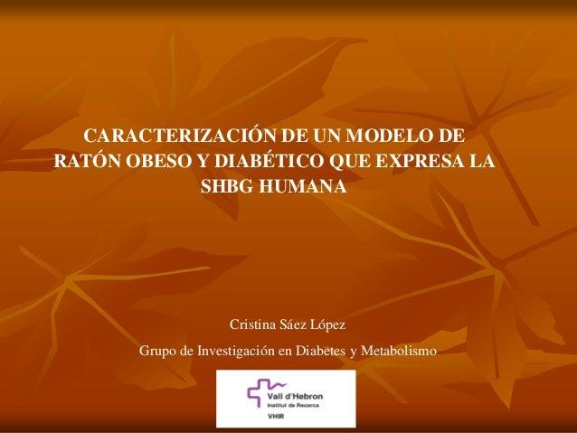 CARACTERIZACIÓN DE UN MODELO DERATÓN OBESO Y DIABÉTICO QUE EXPRESA LA            SHBG HUMANA                     Cristina ...