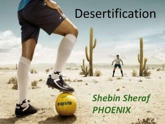 Shebin sheraf