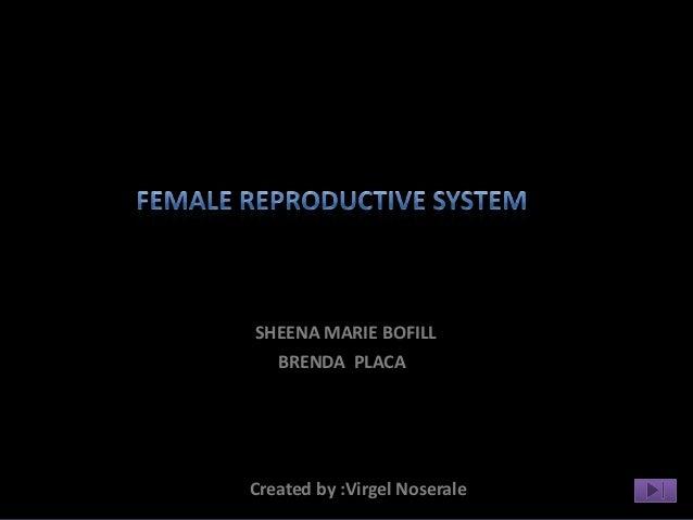 SHEENA MARIE BOFILL  BRENDA PLACACreated by :Virgel Noserale
