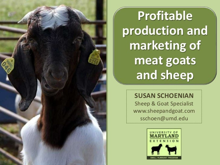 Profitableproduction and marketing of  meat goats  and sheep  SUSAN SCHOENIAN Sheep & Goat Specialist www.sheepandgoat.com...