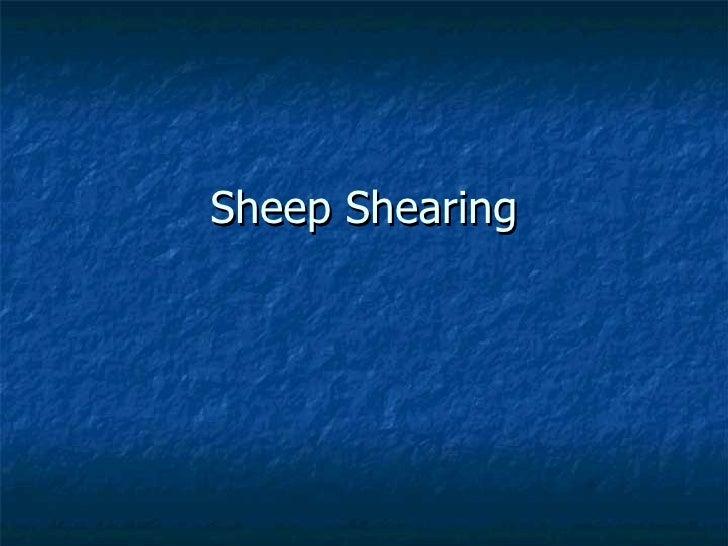 Sheep Shearing Presentation